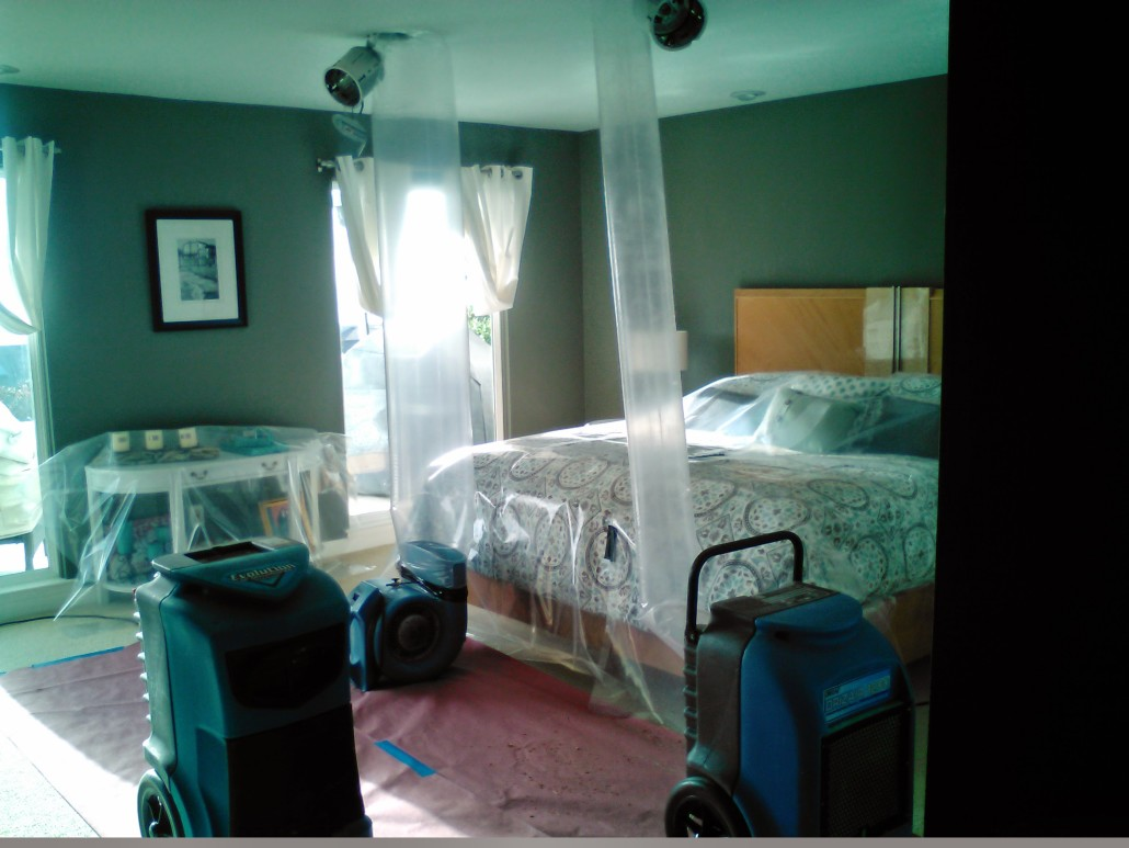 The Water Damage Experts Before After Photos